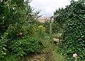 E.V.A. LanxmeerHouse2009.jpg