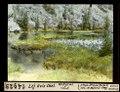 ETH-BIB-Lej Ovis Chel, Wollgras von Süden-Dia 247-14925.tif