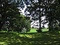 East End Park woods 13 August 2017.jpg