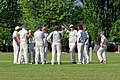 Eastons CC v. Chappel and Wakes Colne CC at Little Easton, Essex, England 38.jpg
