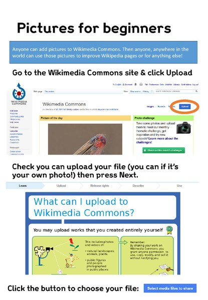File:Editing Wikimedia Commons - Beginners guide.pdf