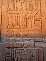 Egypt-5B-060 - Medical Carvings (2217396674).jpg