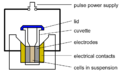 Electroporation Diagram.png