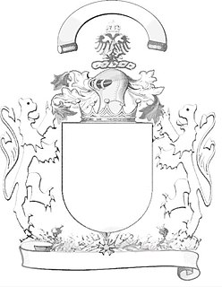 Coat of arms unique heraldic design on a shield or escutcheon