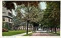 Elm Street (NBY 7274).jpg