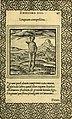 Emblemata (1565) (14769684453).jpg