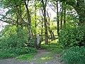 Entrance to Birks Wood, Oughtibridge, from Skelton Rise - geograph.org.uk - 815441.jpg