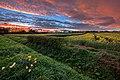 Eppleworth fields IMG 4431 - panoramio.jpg