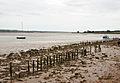 Exe Estuary at Turf.jpg