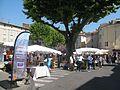 Fête de la lavande d'Apt Panneau indicatif de l'AOC Huille essentielle de lavande de Haute-Provence.jpg