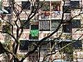Facade - Yangon - Myanmar (Burma) (11751286456).jpg