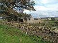Farm Building at Moor House - geograph.org.uk - 251802.jpg
