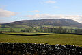 Farmland near Wharfe, Yorkshire Dales National Park.jpg