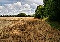 Farmland north of Pylewell Park - geograph.org.uk - 1431665.jpg
