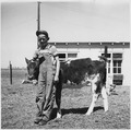 Farmsteader's son with prize 4H club calf - NARA - 196408.tif