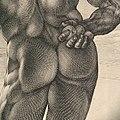 Farnese Hercules MET DP102199.jpg