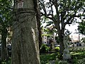 Fatima, Heredia Province, Heredia, Costa Rica - panoramio (12).jpg