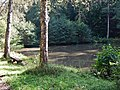 Faulbachsee bei dem Museums Radweg, Würm.Rad.Weg - Heckengäu Natur Nah, Skulpturenweg, Sculptoura, Kunst in der Natur - panoramio.jpg