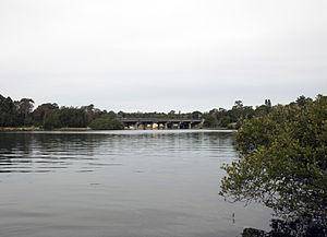 Fig Tree Bridge - The bridge viewed from Boronia Park.