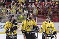 Finale de la coupe de France de Hockey sur glace 2014 - 169.jpg