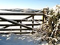 Five Bar Gate in the Snow - geograph.org.uk - 1652799.jpg