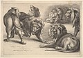Five Lions and a Lioness MET DP823913.jpg