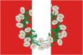 Flag of Burakovskoe (Krasnodar krai).png