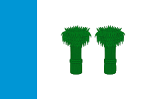 Kadyysky District - Image: Flag of Kadyisky rayon (Kostroma oblast)