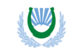 Flag of Nalchik (Kabardino-Balkaria).png