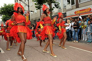 Afro-European European citizens and residents born in or with ancestors from Africa