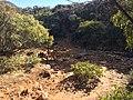 Flinders Ranges SA 5434, Australia - panoramio (149).jpg