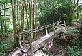 Footbridge on the Tunbridge Wells Circular Path in Chase Wood - geograph.org.uk - 1490677.jpg