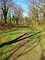 Footpath Junction - geograph.org.uk - 757074.jpg