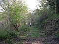 Footpath Newchurch to Llecheigon - geograph.org.uk - 1244540.jpg
