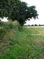 Footpath to Common Corner - geograph.org.uk - 978671.jpg