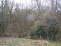 Footpath to Quarry Wood - geograph.org.uk - 1200276.jpg