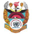 Force Intervention Brigade (FIB) Logo.png