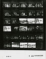 Ford A5292 NLGRF photo contact sheet (1975-06-27)(Gerald Ford Library).jpg
