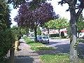 Foresters Drive, Wallington (B272) - geograph.org.uk - 48464.jpg
