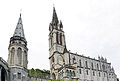 France-001999 - Basilica of the Immaculate Conception (15773154755).jpg