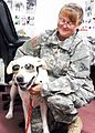 Friendly pooch Frisco, at Guantanamo -a.jpg