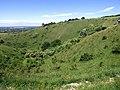 GOC Ashridge & Ivinghoe 051 Incombe Hole (35718014440).jpg