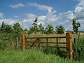 Gate in Hillcrest Paddock - geograph.org.uk - 494314.jpg