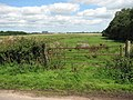 Gate into marsh pasture - geograph.org.uk - 1425147.jpg