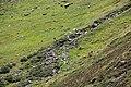 Gemeinde Sölden, Austria - panoramio (19).jpg