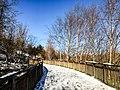 Georgia snow IMG 5163 (38061513165).jpg