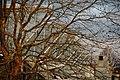 Glaspalast, Sindelfingen - panoramio.jpg