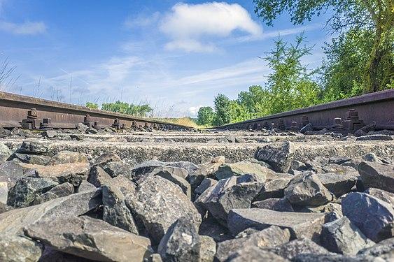 Gleis der stillgelegten Steigerwaldbahn.jpg
