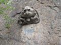 Goethova stezka, Lví hlava.jpg