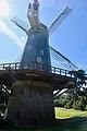 Golden Gate Park - Murphy Windmill - March 2018 (1646).jpg